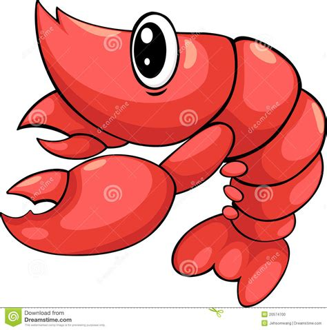 shrimp vector stock vector image of illustration drawing
