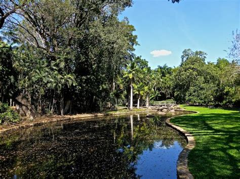 Was The Python Real Picture Of Darwin Botanic Gardens Darwin Botanical Gardens