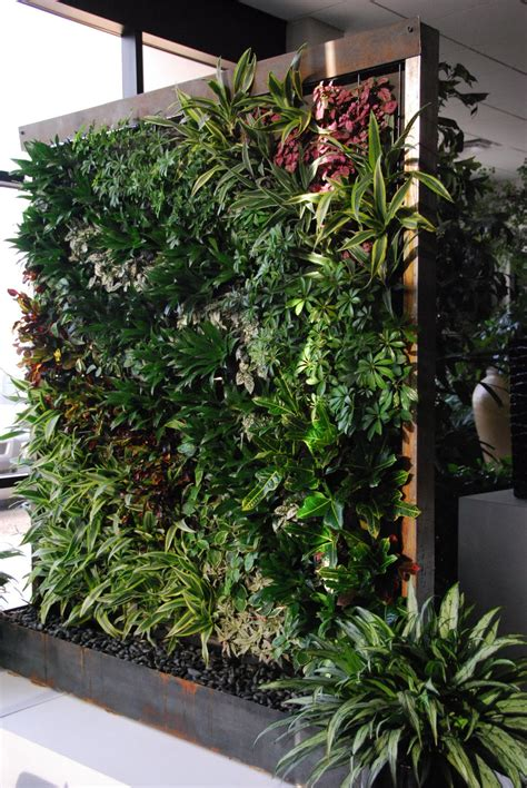 wall garden containers growing up green walls vertical gardens from vines and