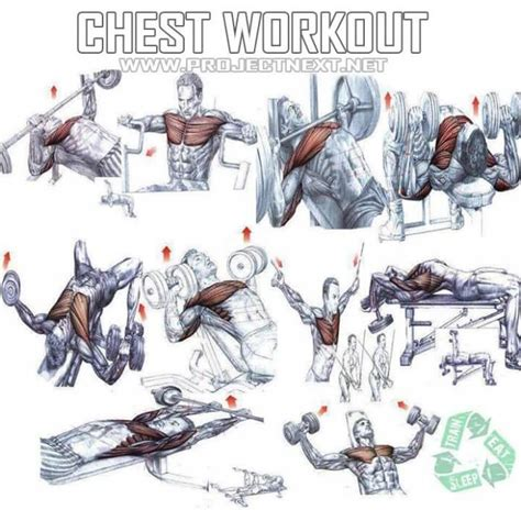 chest workout healthy fitness exercises gym bench press