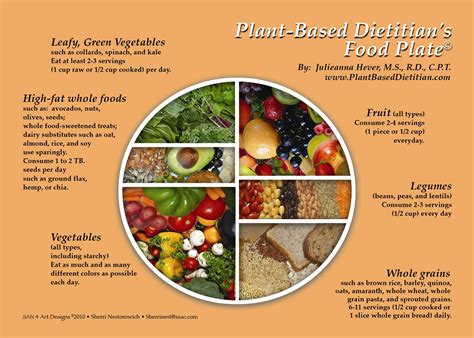 for a modern guide to plant based vegan gluten free recipes for busy lives books vegans plant based dietitian