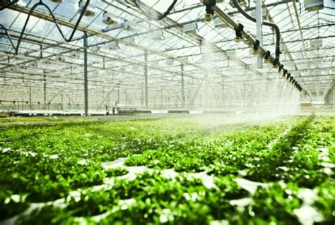 greenhouses advanced technology for protected horticulture books symposium organic greenhouse horticulture in october in
