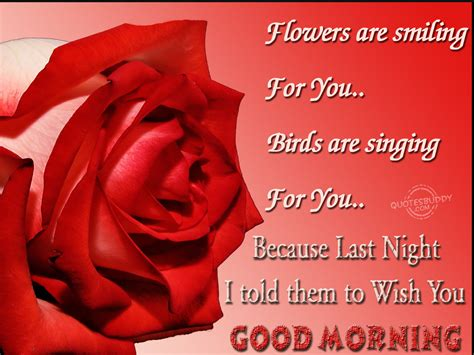 sweet and morning quotes and messages morning wish pic impremedia net