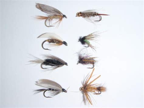 swinging wet flies for trout swinging caddis flies fishing tips the fishin hole