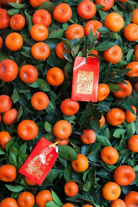 orange meaning in new year why mandarin orange or kumquat trees new year