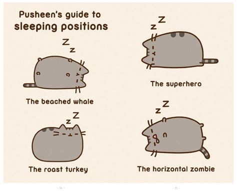 lazy s guide to living a beautiful books pusheen guide to sleeping postions pusheen the cat photo