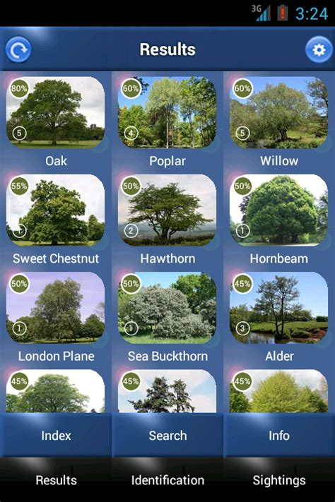 google images identify tree id british trees android apps on google play