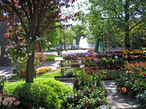 fiori e giardini balconi fioriti torna la 27a festa di fiori e giardini