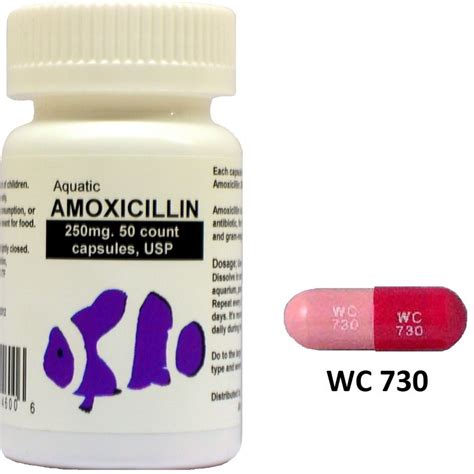 On The Shelf Antibiotics by Comprehensive Information On Amoxicillin Canada