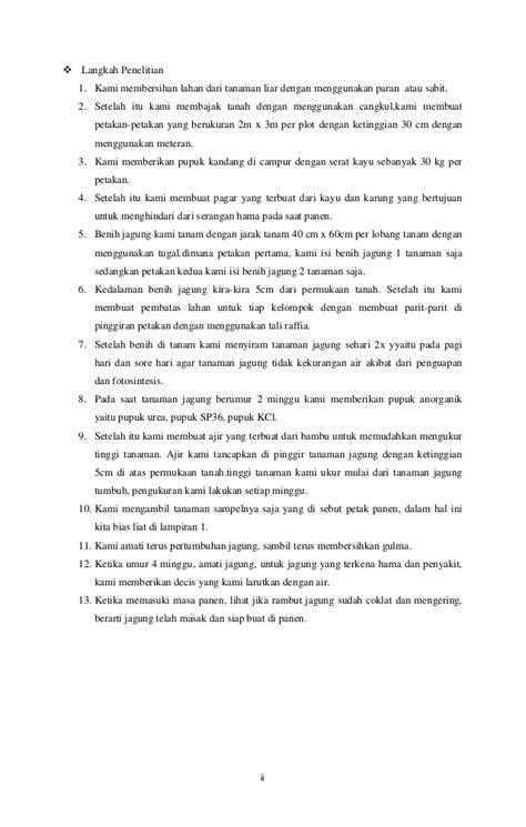 Bibit Jagung Dk 95 studi banding budidaya jagung