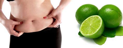 Cara Menurunkan Perut Yang Buncit cara mengecilkan perut buncit dengan jeruk nipis
