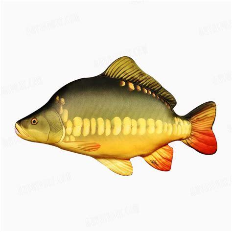 pillow fish carp fish pillow akvasport