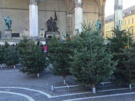 weihnachtsbaum kaufen m 252 nchen my blog