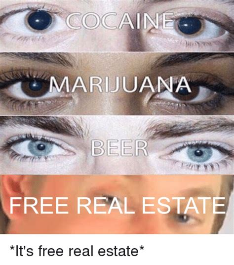 It S Free Meme - 25 best memes about its free real estate its free real
