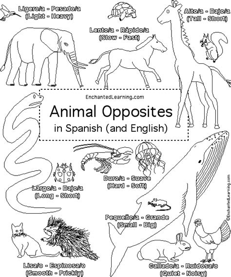 coloring pages in spanish free spanish coloring pages coloring pages in spanish