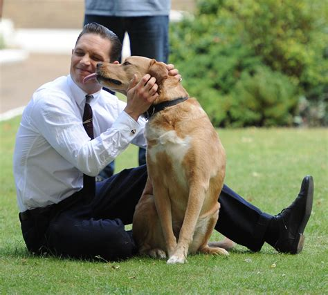 tom s dogs tom hardy plays with woodstock on the set of legend lainey