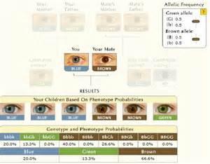 when do babies eye color change test couleur des yeux de votre b 233 b 233 p n k