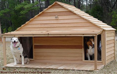 oversized dog house large duplex dog house
