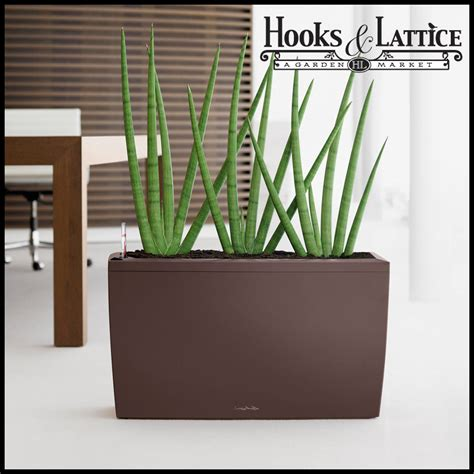 Indoor Planters by Modern Indoor Planters Self Watering Indoor Planters