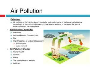 Cause And Effect Essay About Pollution by Environmental Pollution Essay
