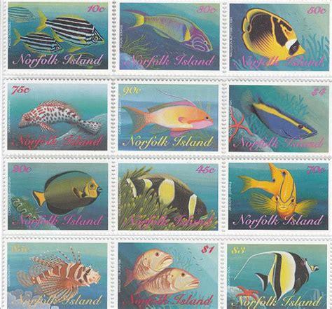 Pakan Untuk Ikan Hias Air Laut seputar dunia perikanan gambar ikan hias air laut