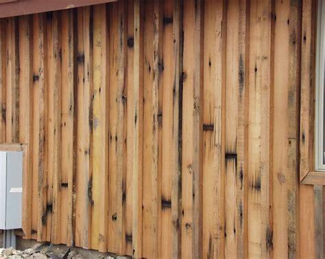 Board Batten Wood Siding Board Batten Wood Siding 28 Images Maibec Wood Siding