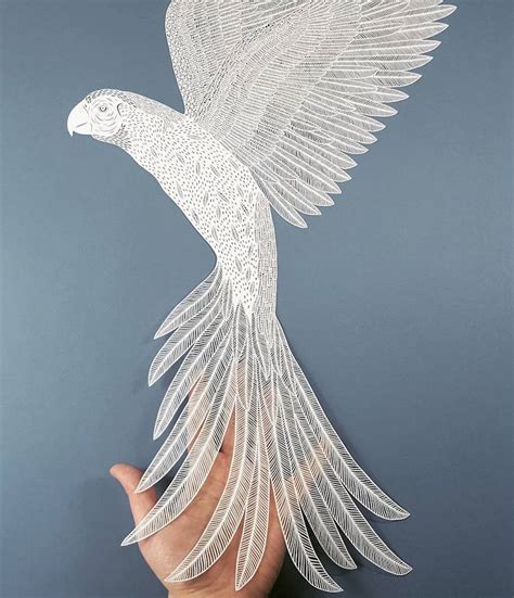 138 Best Paper Cut Images - paper artist selection showcases the best in contemporary