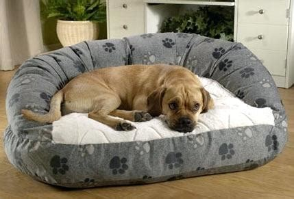 drs foster and smith dog beds fosters and smith dog beds restate co