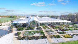 petitti garden centers home garden store plant nursery