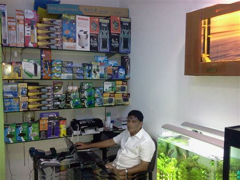aquarium design in chennai aquarium professional in chennai aquarium design india