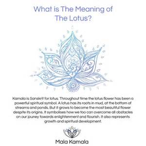 Lotus Mandala Meaning Best 25 Lotus Mandala Meaning Ideas On Lotus