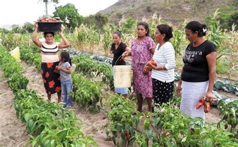 Imagenes Mujeres Rurales   pregon agropecuario argentina y fao impulsan campa 209 a
