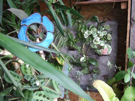 Sprei Grow Hexa 1 hydro aquaponics page 4 nori s stuff