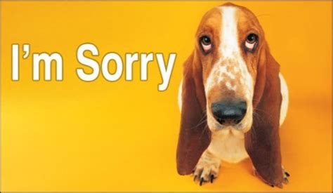 im sorry free i m sorry ecard email free personalized animals