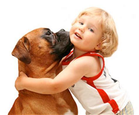 imagenes de niños jugando con un perro ni 209 os y perros cuidados b 193 sicos animal home 174