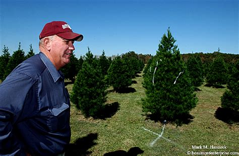 photojournalism beaver s christmas tree farm