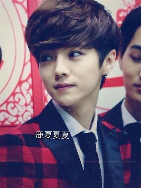 Exo Office Top 323 best luhan images on luhan exo deer and luge