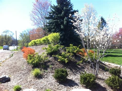 Landscape Berm Pictures Landscape Berm In Brighton Michigan Traditional