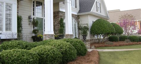 Landscaping In Greenville Sc Landscape Design Landscapers Greenville Sc