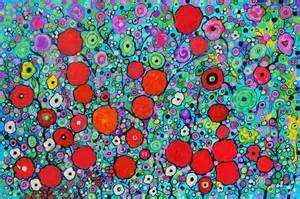 the polish playground colorful flower print