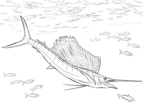 walleye pike fish coloring pages