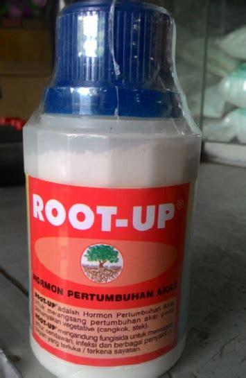 Root Up 100 Gram Hormon Pertumbuhan Akar root up 100 gram bibitbunga