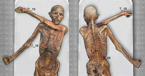 body art otzi the 5 300 year old mummified iceman had 61