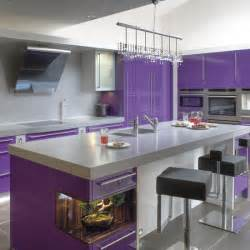 Purple Kitchen Cabinets Cabinets For Kitchen Purple Kitchen Cabinets
