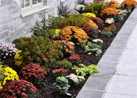 fall curb appeal create fall curb appeal with these 5 ideas