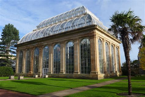 house palm temperate palm house botanics stories