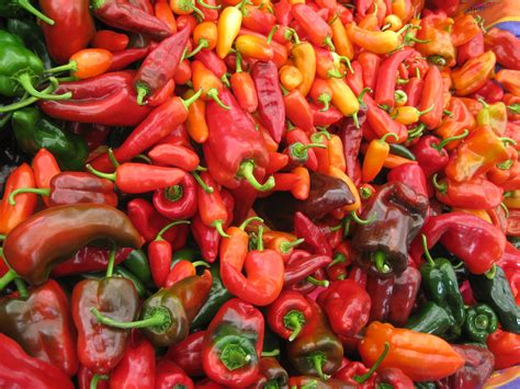 red hot peppers sweet n hot red pepper jam prospect the pantry