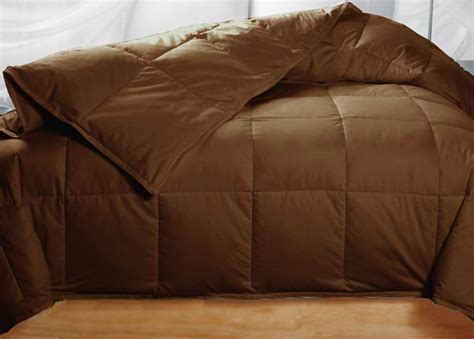 brown down comforter queen queen chocolate brown feather down comforter only 51 99