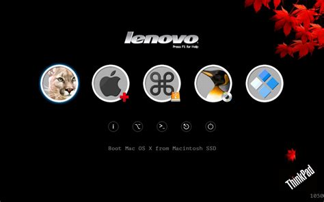 themes for lenovo x2 ap lenovo thinkpad t420 with uefi only installation guides