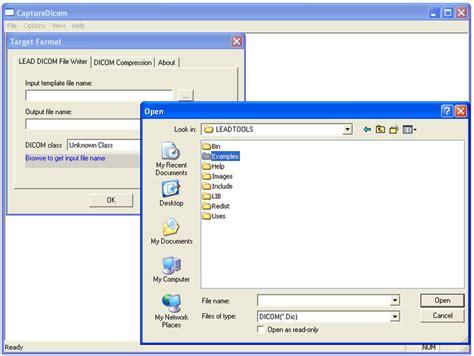video file format in multimedia leadtools multimedia sdk